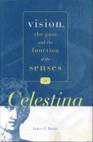 Cover image for the book Vision, the Gaze, and the Function of the Senses in