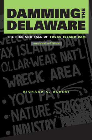 Cover image for Damming the Delaware: The Rise and Fall of Tocks Island Dam By Richard C. Albert