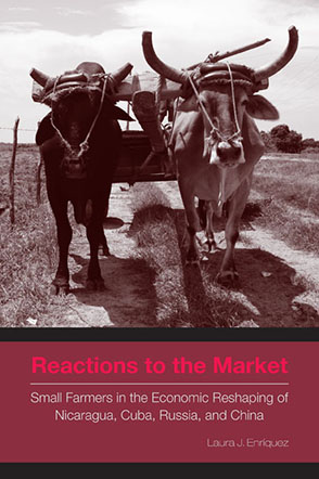 Cover image for Reactions to the Market: Small Farmers in the Economic Reshaping of Nicaragua, Cuba, Russia, and China By Laura J. Enríquez