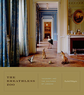 Cover image for The Breathless Zoo: Taxidermy and the Cultures of Longing By Rachel Poliquin