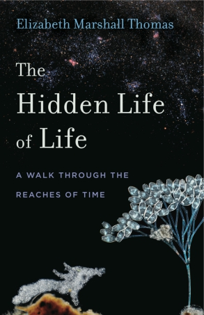 Cover image for The Hidden Life of Life: A Walk through the Reaches of Time By Elizabeth Marshall Thomas