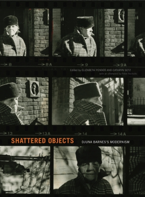 Cover for the book Shattered Objects