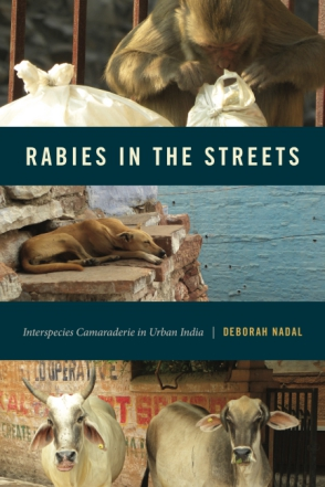 Cover for the book Rabies in the Streets