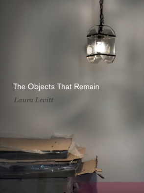 Cover image for The Objects That Remain By Laura Levitt