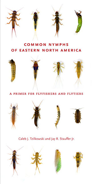 Cover for the book Common Nymphs of Eastern North America