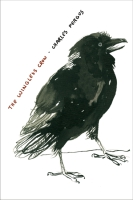 Cover for the book The Wingless Crow