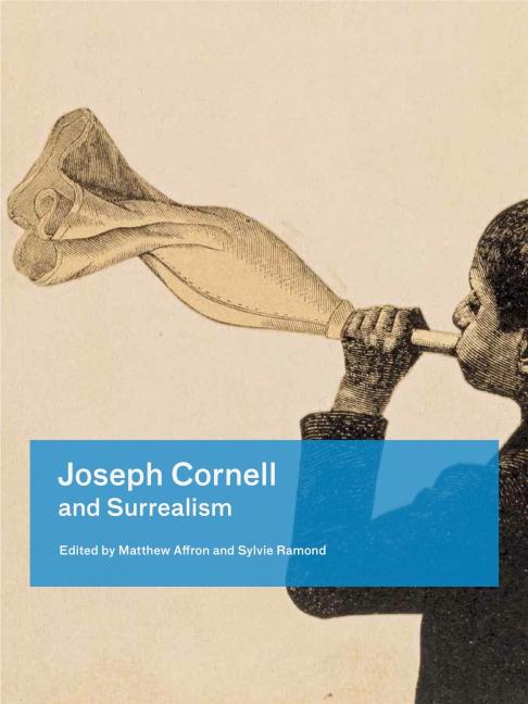 cornell box essay