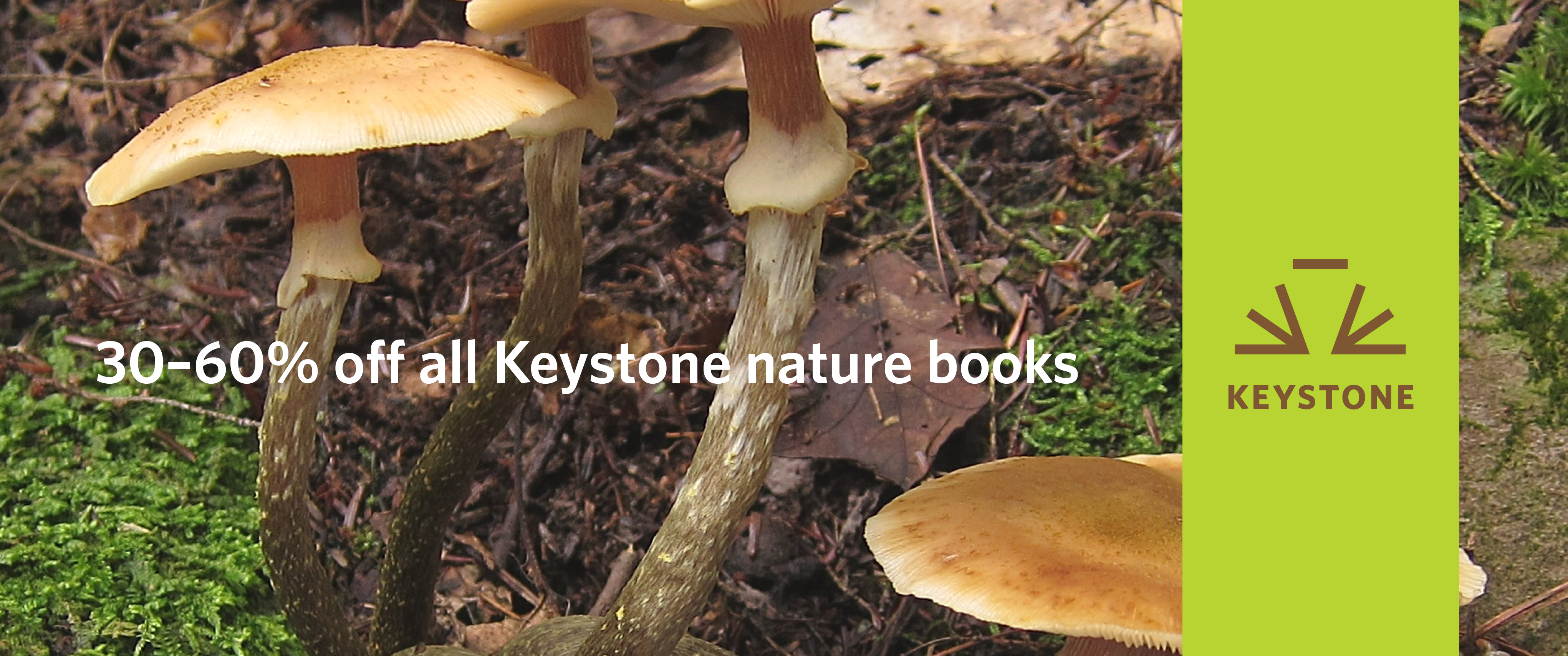 Keystone nature sale