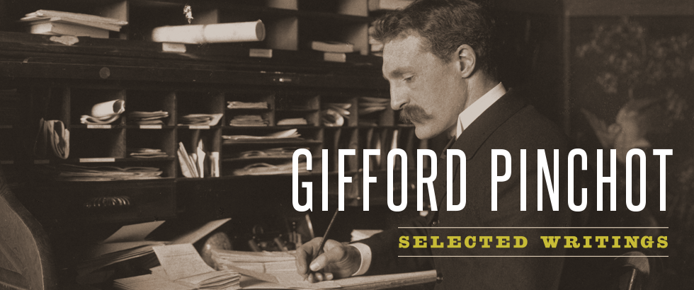 Banner for Gifford Pinchot