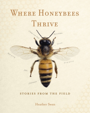 "Image for news item Where Honeybees Thrive on WPR's ""Central Time"""