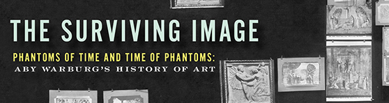 Banner ad for The Surviving Image