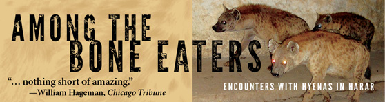 Banner ad for Among the Bone Eaters
